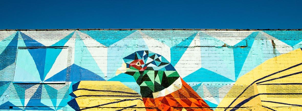 Colibri Graffiti